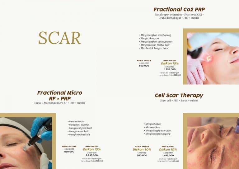 katalog immoderma (19) Scar